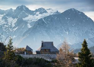 Koča Ojstrica Velika planina