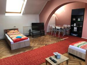 Apartament David, Ferienwohnungen  Braşov - big - 1