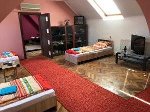 Apartament David, Ferienwohnungen  Braşov - big - 13