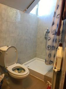 Apartament David, Ferienwohnungen  Braşov - big - 3