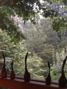Cabañas Tinquilco
