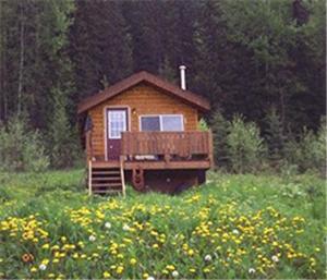 obrázek - Bear Corner Adventures Bed & Bale