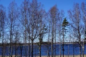 Vacation house next to Lake Vänern, Holiday homes  Gullspång - big - 3