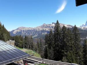 obrázek - Hotel Alpenblick Mürren