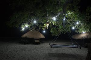 Dakosta Island Beach Camp