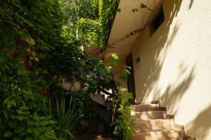 Villa Lily of Budva, Vily  Budva - big - 3