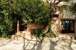 Villa Lily of Budva, Vily  Budva - big - 53