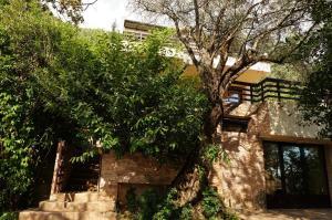 Villa Lily of Budva, Vily  Budva - big - 54