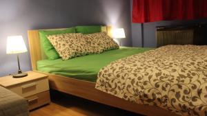 Icons Apartments Danko, Ferienwohnungen  Budapest - big - 13