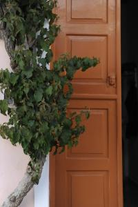 Apano Vrysi, Apartmány  Tinos Town - big - 28