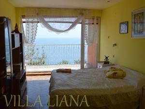 Villa Liana, Prázdninové domy  Bozhurets - big - 2