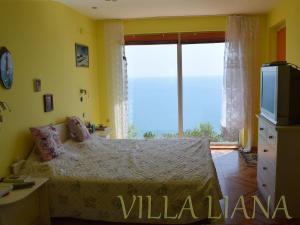 Villa Liana, Prázdninové domy  Bozhurets - big - 10