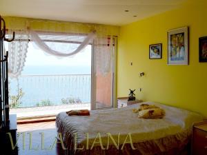 Villa Liana, Prázdninové domy  Bozhurets - big - 8