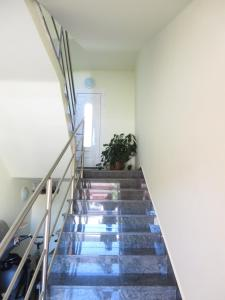 Apartment Sara, Appartamenti  Pola - big - 12