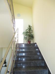 Apartment Sara, Appartamenti  Pola - big - 13