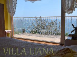Villa Liana, Prázdninové domy  Bozhurets - big - 6