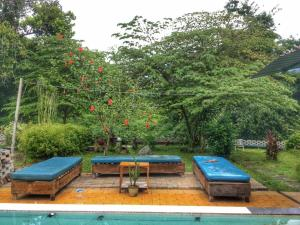 Sleepy Hollow Villa, Affittacamere  Kampung Padang Masirat - big - 33