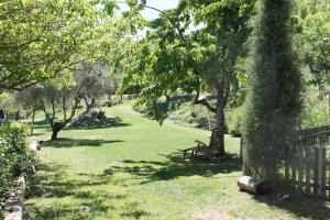 El Zarzal.  Foto 6