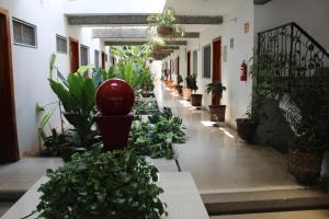 obrázek - Hotel Casablanca Tuxtla