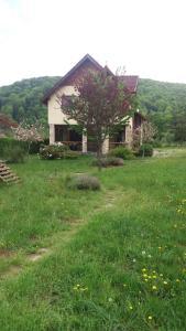 Yellow House, Villas  Dejani - big - 24