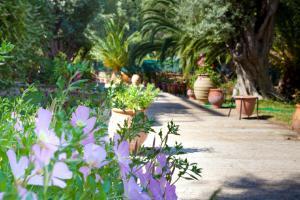 obrázek - Villa Verde Fenia