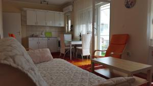 Apartment Dragana & Igor, Ferienwohnungen  Novi Sad - big - 8