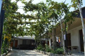 U Norika i Susanny Guest House, Locande  Alakhadzi - big - 2