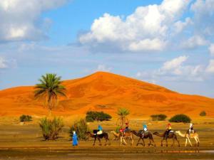 Riad Desert Camel, Hotels  Merzouga - big - 62