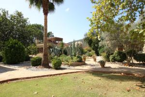 Kaya Vadi Villas, Holiday homes  Kayakoy - big - 70