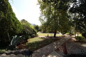 Kaya Vadi Villas, Holiday homes  Kayakoy - big - 78