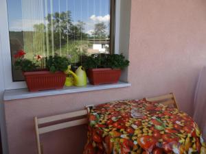 Orange Apartment, Apartmanok  Veliko Tarnovo - big - 9