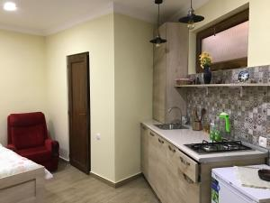 Apartment on Tsminda Nino 5