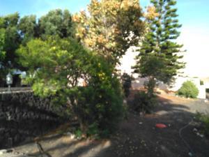 Villa Jasmina, Guest houses  Nazaret - big - 25