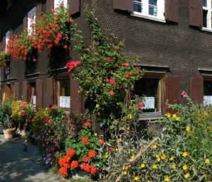 Ferienhof Hiemer, Апартаменты  Sulzberg - big - 4