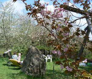 Ferienhof Hiemer, Ferienwohnungen  Sulzberg - big - 14