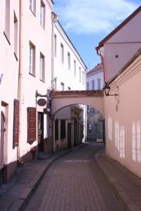 Old Town Apartment Antokolskio, Appartamenti  Vilnius - big - 1