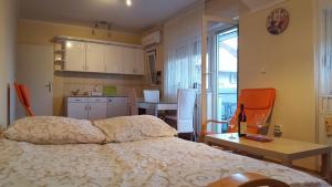 Apartment Dragana & Igor, Ferienwohnungen  Novi Sad - big - 13