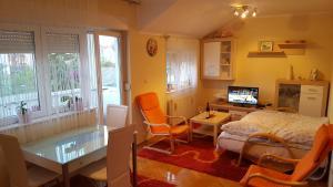 Apartment Dragana & Igor, Ferienwohnungen  Novi Sad - big - 15