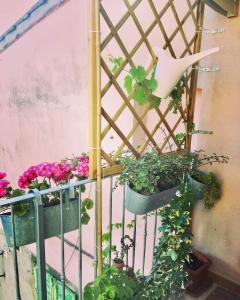 obrázek - b&bPartino di Palaia