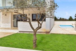 House with a pool in Vodice, Croatia