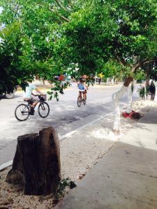 Mi Casita Playa del Carmen, Ferienwohnungen  Playa del Carmen - big - 21