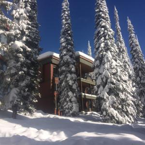 The Guilt Inn Properties, Holiday homes  Silver Star - big - 54