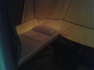 Silver eagle Adventure Camp site