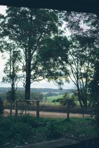 Foragers, Horské chaty  Pemberton - big - 10