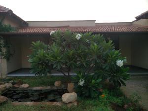 Thavaru Hometay