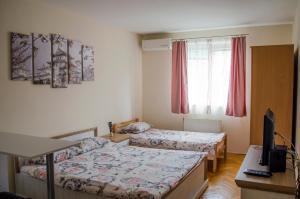 Apartment Harmony, Апартаменты  Нови-Сад - big - 4