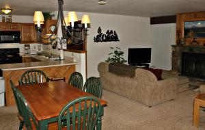 Buffalo Village 305BB, Holiday homes  Silverthorne - big - 3