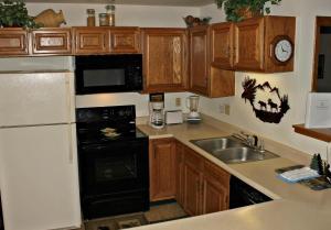 Buffalo Village 305BB, Holiday homes  Silverthorne - big - 4