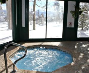 Buffalo Village 305BB, Holiday homes  Silverthorne - big - 7