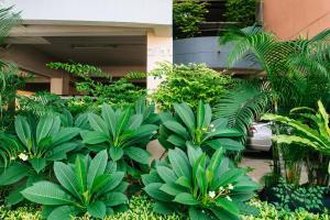 Grand Residence Ngamwongwan 19, Hotely  Nonthaburi - big - 13